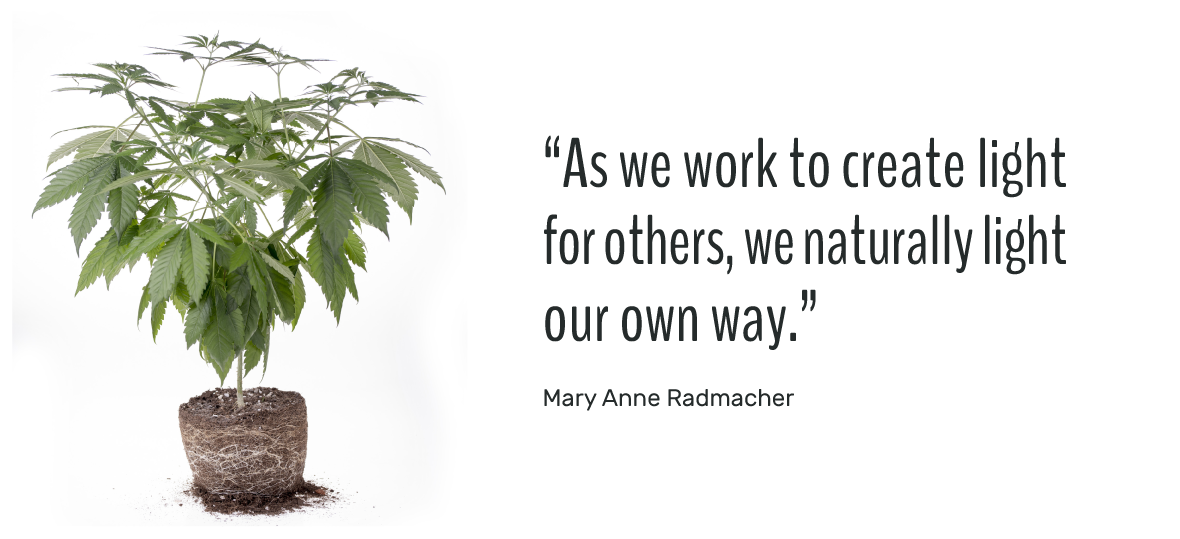 As we work to create light for others, we naturally light our own way. Mary Anne Radmacher
